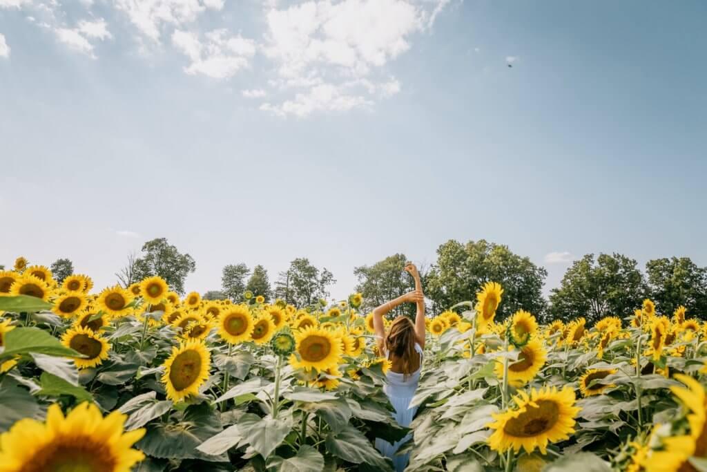 person standing in sunflower field 視頻及電影是由序列組成的,序列由場景組成的,場景由鏡頭組成的, 景深是一個頻譜,它提供了許多不同類型的相機焦點。 在拍攝微電影廣告或是照片這項技巧更是不可缺少。 景深是也是焦距問題, 因此優秀的攝影師明白,景深就是光譜,學習可以微調, 如果想成為一位出色的攝影師, 不論是想拍照片還是拍影片,了解攝影工具及功能是非常重要的。 景深是提升攝影作品的一項重要技巧,當學會活用景深後, 除了能大幅提升自己的攝影技巧外,還可以增加充滿藝術感的創造力, 能知道如何產生清晰的圖像,以及何時將物體對準焦點, 若也想精進自己廣告拍攝或是活動拍攝,景深是必要學習的拍攝技巧。