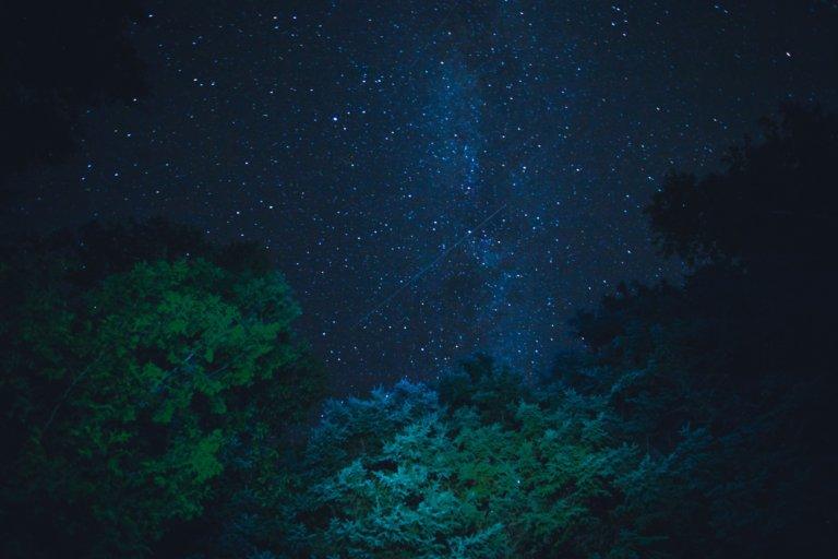 starry night sky from below trees 所有的活動拍攝如何捕獲光由三個組成曝光三角形的變量決定。 什麼是曝光三角形?如何使用其三個設置中的每一個來捕獲圖像? 在本文中,將深入研究創建圖像曝光的三個要點, 這邊還將查看一個曝光三角圖, 可以將其保存為參考方便創建自己所設想的圖像。