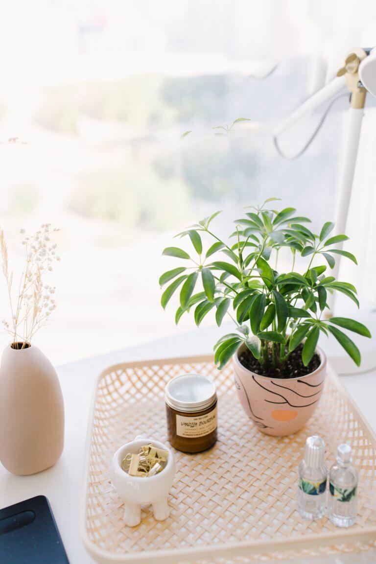 "table with potted plant and small items Instagram當中有著很多主題的風格照片攝影,如:家庭日常的食物攝影,穿搭日常...等, 那麼今天來聊聊貼近自己私生活的寫真吧! 首先,考慮私下拍東西的時候,""是否有喜歡東西"",有愛好或者想把它變成愛好的事物""。 以這樣的基礎是相當重要的,如果沒有喜愛的成分,拍攝個人生活的延伸會有點令人生畏。 仔細思考一下生活中的自己喜歡怎麼的生活方式,及室內的裝飾及佈置, 想想自己喜歡的生活方式。 拍攝方式: 1.保持房間整潔是最首要的,創造一個讓自己想拍照的環境 2.自己製作出2.3個最喜歡的內部區域 3.製作可用於拍攝當中的配件及物品,襯托效果"