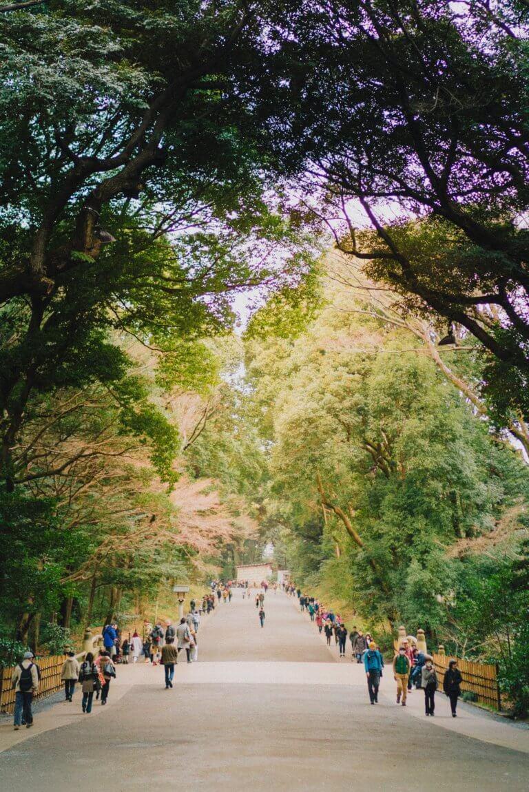 "people walk down wide pathway surrounded by trees 拍攝快照,有著""取景器中反映內容之間的關係"" 而攝影取景時,總免不了會去隨拍,但拍攝這些零碎畫面,其實也能有故事跟質感, 即便是隨拍在Instagram也能夠成為人氣王呢! 懂得看圖的人不僅會意識到顯眼的部分,還會意識到它與背景之間的關係,這更是所有活動攝影及錄影的基本! 而將日常拍攝出質感,並不侷限在室內造景,隨處可有,在這邊將透過7個觀點來傳述隨拍技巧。"